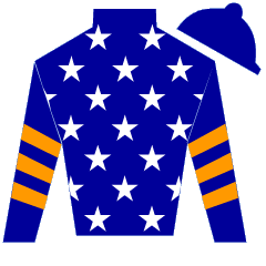 Battleworthy Silks
