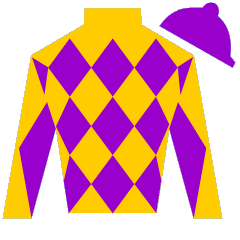 Decked Out Silks