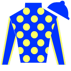 Citrus Star Silks