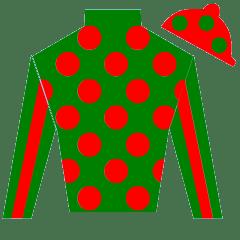 The Penny Horse Silks