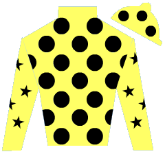 Hedge End Silks