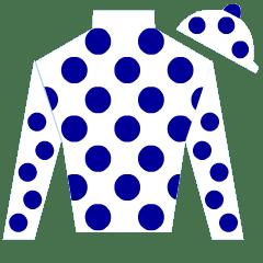 Domino Silks