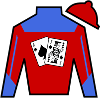 Empiricist Silks