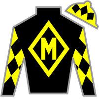 First Star Silks