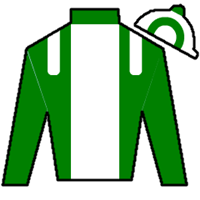 Green Mask Silks