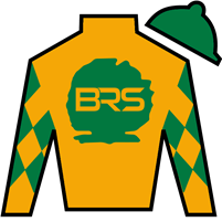 Timely Tradition Silks