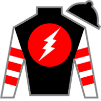 Noncents Silks