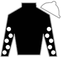 Behind the Couch Silks