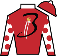 Snapper Sinclair Silks