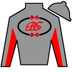 Curlin's Honor Silks