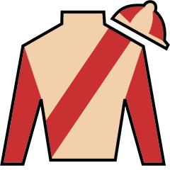 Wicked Strong Silks