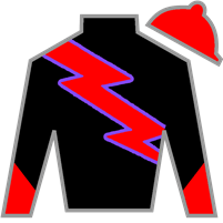 Boxer Brief Silks