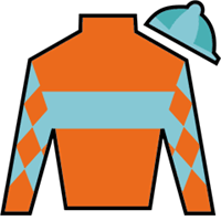 Sensible Lady Silks