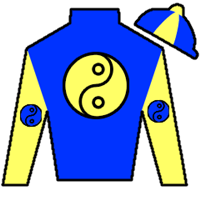 Five Star Fun Silks