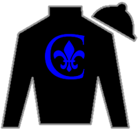 Legacy Of Truth Silks