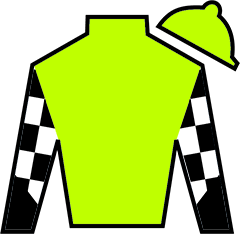 Remember The Maine Silks