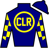 Stay Anchored Silks