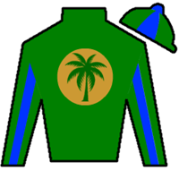 Tammy's Victress Silks