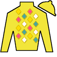 Diamond Bachelor Silks