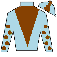 Yesterdayoncemore Silks