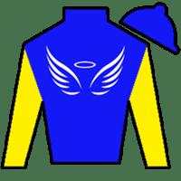 Jersey Town Angel Silks