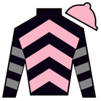 Domineer Silks