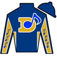 Zip Ridge Silks
