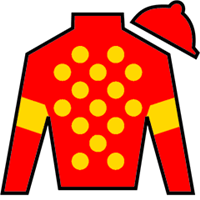 Lucy Ring Silks