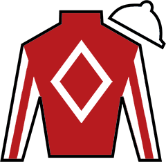 Gray Beau Silks