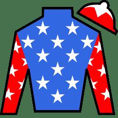 Restless Rider Silks