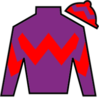 Fight Hero Silks