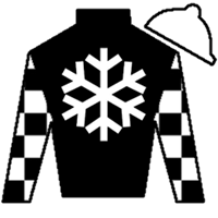 Exclamation Point Silks