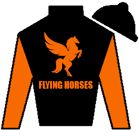 Flying To Honor  Silks