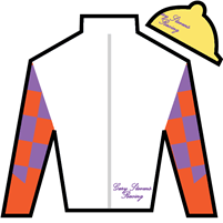 Shotgun Rider Silks