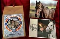 Game On Dude coffee on sale to support retired racehorses.
