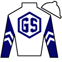 Funny Guy Silks