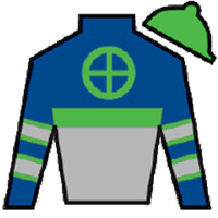 Giant Expectations Silks