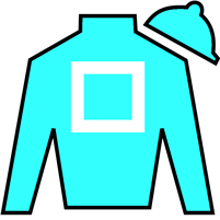 Maid To Remember  Silks