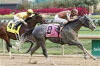Geothermal beats Departing in 2015 Lukas Classic.