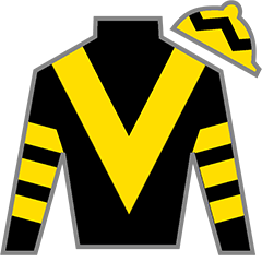 Glorious Forever Silks