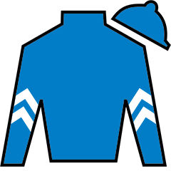 Kentucky Wildcat Silks