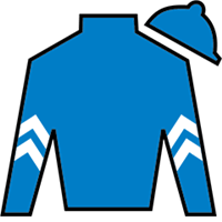 Dickinson Silks