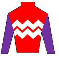 Power Spot Silks