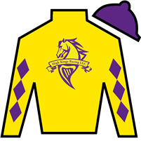 Lemon Zip Silks