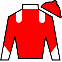 Bridgehampton Silks