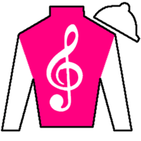 Courage And Honor Silks