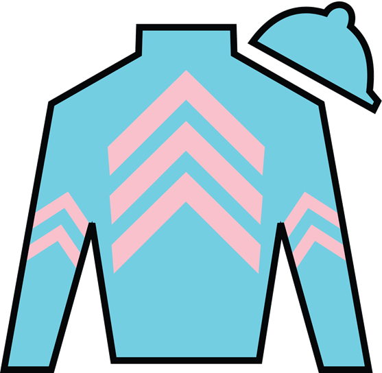 Homewood Field Silks