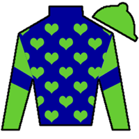 Conquest Enforcer Silks