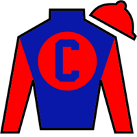 Hollywood Wildcat Silks
