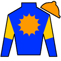 Patterson Cross Silks